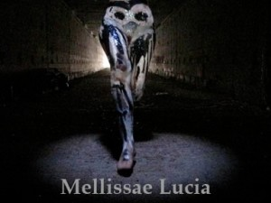 Oracle of Initiation divination deck Mellissae Lucia
