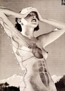 vintage_anatomy_medium