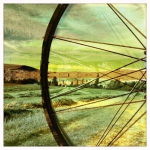 Harvest Wheel 1